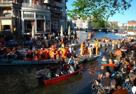 DSC 6818 Queensday f